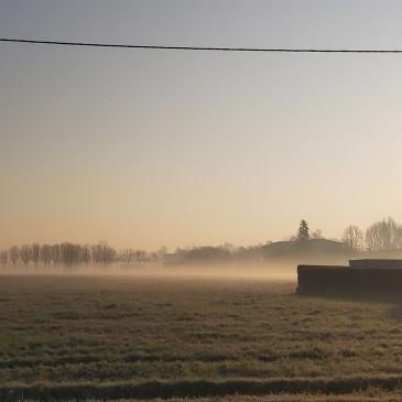 Nebbia e sole in val padana